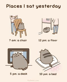 Pusheen The Cat - Animated Gif - Places I Sat Yesterday Crazy Cat Lady, Crazy Cats, Cute Cats, Funny Cats, Cats Humor, Funny Horses, Adorable Kittens, Funny Animal, Pusheen Stormy