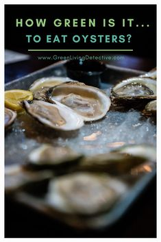 Essentially oysters are little environmental scrubbers. Each one can filter up to 50 gallons of water a day, removing nitrogen and phosphorous. Plus, both farmed and wild oysters sequester nitrogen and CO2 from the atmosphere. So, they must be a sustainable food, right? Follow the link to find out the truth about eating oysters. >>>> #oysters #sustainablefood #saveouroceans #environment #sustainability #greenliving #food Raw Oysters, Sustainable Food, Sustainable Living, Peanut Butter Jar, Green Products, Super Greens, Eating Raw, Green Life