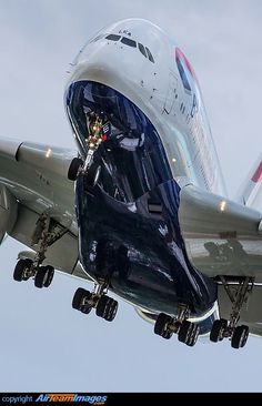 With it's huge and elagance.. | #aviation #airbus #A380