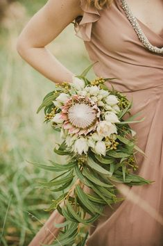 super unique bridal bouquet = large protea, small proteas, fynbos and gum leaves all proudly south african Flor Protea, Protea Bouquet, Floral Bouquets, Trailing Bouquet, Boquet, Protea Flower, Blush Bouquet, Bridesmaid Inspiration, Wedding Inspiration
