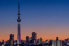 Dusk In Tokyo