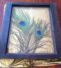 I love peacock feathers. Framing them is a phenomenal idea.