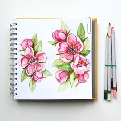 """What's your favourite blossom? I tried using 'spring/summer"""" watercolour pencils for this… Prima Watercolor, Liquid Watercolor, Watercolor Pencils, Watercolor Flowers, Watercolor Ideas, Watercolours, Watercolor Beginner, Colored Pencil Techniques, Prismacolor"""
