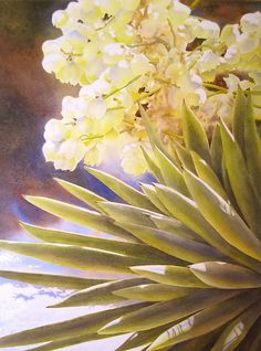 Dee Tunseth - Yucca in Bloom- - Painting entry - July 2012 Watercolor Succulents, Watercolor Cactus, Cacti And Succulents, Watercolor Paintings, Floral Paintings, Watercolours, Watercolor Disney, Painting Competition, Desert Art