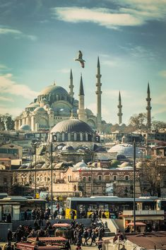 Istanbul - Turkey Pics, Cities, Turkey Country, Travel Tickets, Dream City, Istanbul Turkey, Travel Agency, Mosque, Belle Photo