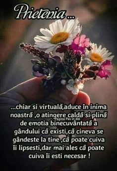 Sa culegem împreună acest buchetel Feelings And Emotions, Dalai Lama, True Words, Qoutes, Friendship, Thankful, Positivity, Faith, Motivation