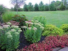 Strategic bulb placement - The Obsessive Neurotic Gardener