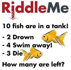 12 Impossible Riddles That Will Confuse Your Brain - Mind Game Brain Tricks, Mind Tricks, Impossible Riddles With Answers, Quiz Questions And Answers, Brain Gym, Metal Tree Wall Art, Mind Games, Brain Teasers, Being A Landlord