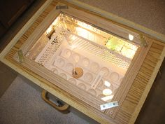 A homemade incubator will enable you to hatch the number of eggs you want, when you want.Hens are no Homemade Incubator, Diy Incubator, Chicken Incubator, Keeping Chickens, Raising Chickens, Homemade Cabinets, Decorating Your Home, Diy Home Decor, Decorating Ideas