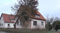 """""""Friederike"""" tost über Northeim Cabin, House Styles, Plants, Home Decor, House, Homemade Home Decor, Cabins, Flora, Cottage"""