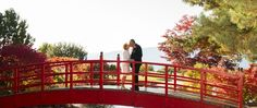 Our list of ALL the Okanagan's Wedding Photographers - Top Okanagan Wedding Photographers in Kelowna, Vernon, Penticton, Kamloops and beyond! Wedding Advice, Wedding Planning Tips, Pre Marriage Counseling, New Relationships, Garden Bridge, Photographers, Outdoor Structures