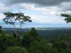 Spectacular views of the Golfo Dulce and Corcovado National Park from Bolita's rainforst hiking trails (Dos Brazos de Rio Tigre).
