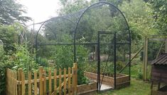 The Roman Arch Fruit Cage brings the benefits of a Roman Arch together with our fruit cage manufacturing experience; the result is a stunning cage. Veg Garden, Fruit Garden, Edible Garden, Lawn And Garden, Hydroponics Setup, Hydroponic Plants, Farm Gardens, Outdoor Gardens, Veggie Gardens
