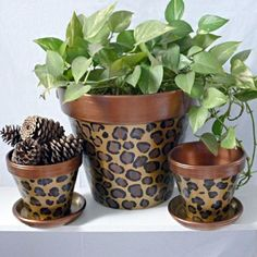 Variety of Ceramic Pots For Your Home Interior. One of the interior arrangements involving natural elements is to place plants with ceramic pots inside the room. Ceramic pot is certainly one of the. Clay Pot Projects, Clay Pot Crafts, Painted Clay Pots, Painted Flower Pots, Painted Pebbles, Hand Painted, Flower Pot Crafts, Ceramic Pots, Garden Crafts