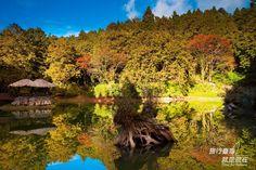 Sisters Lake @#Alishen 姊妹潭 by bensom