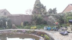 I have new neighbours and a wonderful light garden. Still like a building site but I'm getting there.