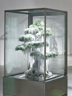 Bonsai… Frozen bonsai by Azuma Makoto, Japan... Wood, earth, and ice... Surprising compositional variables!