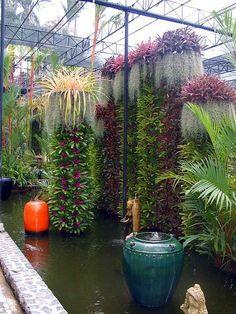 Nong Nooch Tropical Botanical Garden,  Bangkok, Thailand. World class palm and cycad collection