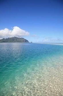 hawaii サンドバー