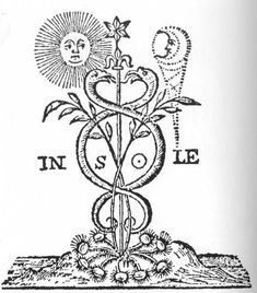580 best Alquimia images on Pinterest | Spirituality, Alchemy and ...