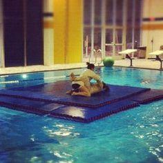 Neat Bjj mats in a Pool great idea