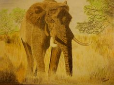This painting by Geoff Fielding is for sale on ADO http://artdiscoveredonline.co.uk/art-gallery/elephant-in-the-bush/