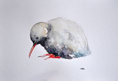 ORIGINAL Watercolor Bird Painting New Zealand by ArtCornerShop