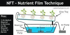 The Wonders of a Good Hydroponics System Green Technology, Hydroponics System, Growing Vegetables, Film, Container Gardening, Women's Sweatshirts, Facade, Movie, Film Stock