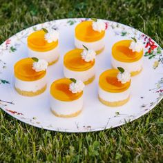 Panna Cotta, Mini Cakes, Sweet Recipes, Cheesecake, Food And Drink, Pudding, Cupcakes, Ethnic Recipes, Baking