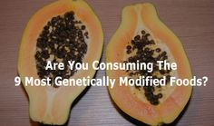 Are You Consuming The 9 Most Genetically Modified Foods?-While this can be true, you can not really stay away from EVERYTHING. Thought it was interesting still, so figured I would share it.