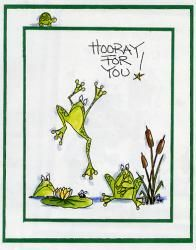 Lots of Frogs Card