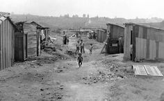 Favela em 1950 onde fica hoje o Parque Ibirapuera. Foto de Sebastião Assis…