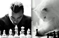Des Hommes et des Chatons: Photo