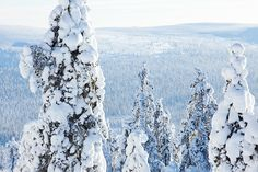 Ylläs. All Over Press Winter Beauty, Finland, Mother Nature, Skiing, Natural Beauty, Heaven, Outdoor, Ski, Outdoors