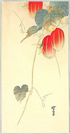 Gyosui Kawanabe 1868-1935 Bee and Red Fruit