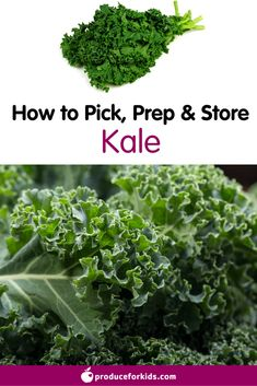How to Pick, Prep & Store Kale + nutrition information, recipes, fun facts and more!