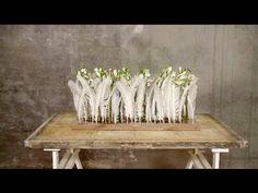A Fresh Xmas design by Alex Segura | Flower Factor How to Make - YouTube