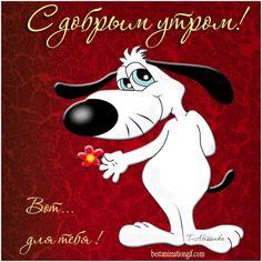 С добрым утром! Вот.. это для тебя! - анимационные картинки и gif открытки
