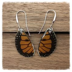 Real Butterfly Wing Jewelry - Earrings - Monarch- Handcut Teardrop-Orange and Black- Handmade- Hind Wing- Insect Jewelry Insect Jewelry, Butterfly Earrings, Butterfly Wings, Wing Earrings, Drop Earrings, Butterfly Species, Black Wings, Insects, Orange
