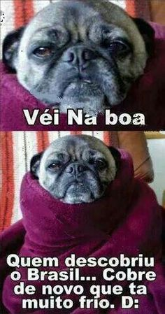 Quem descobriu o Brasil… Cobre de novo…, Funny Images, Photos Online, Funny Jokes, is a funny way in life! A Funny, Funny Dogs, Hilarious, Cartoon Memes, Geek Humor, Animal Memes, Funny Images, Funny Quotes, Jokes