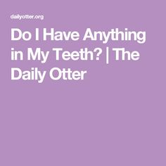 Do I Have Anything in My Teeth? | The Daily Otter