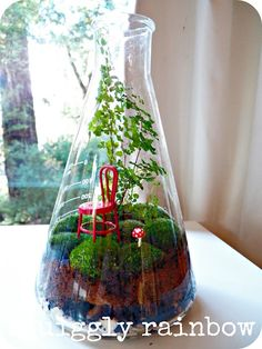 laboratory Erlenmeyer Flask miniature gardens... and the red chair... a favorite!
