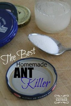 What you Need:  1 cup of sugar  1 tablespoon of Borax  1/4 cup of water  What you Do:  Mix all of the ingredients together. I like to use old jar lids to put the mixture in and allow a steady stream of ants in and out. This is perfect especially if your issue tends to be in your kitchen cupboards. Stick these ant traps in the areas you see them the most and check out it every so often to fill up if needed. .