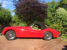 Roadster, Jaguar Xk, Sport, Cars, Classic, Red, Tourism, Cutaway, Derby