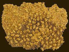 Sculpture en céramique par Christopher Russell - abeilles en céramique