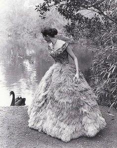 1950s fashion shoot by Athol Smith