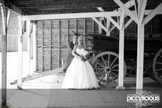 Wedding Photographer : Hop Farm : Mel & Paul ‹ Piccylicious