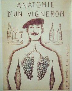Anatomía de un hombre del vino. ;)                                                                                                                                                                                 Más