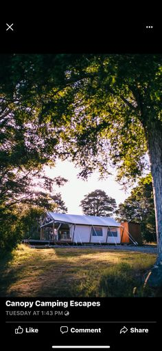 Canopy, Camping, House Styles, Plants, Home Decor, Campsite, Decoration Home, Room Decor, Canopies