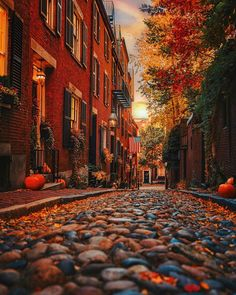 Nobody does Fall better than New England Who can name this famous street in Boston? Thanksgiving Photos, Victoria Magazine, New England Fall, Autumn Scenes, Autumn Cozy, Autumn Fall, Hello Autumn, Autumn Aesthetic, Autumn Photography
